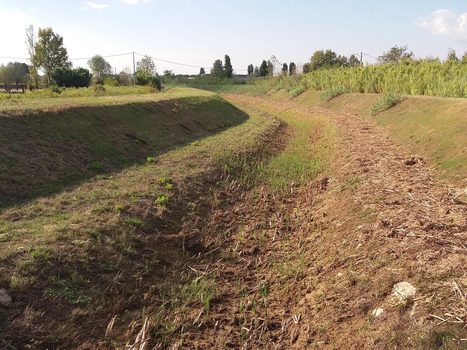 Manutenzione ordinaria anno 2016 - Progetto - Bacino del fosso zannone - Vanni Pierino - Pisa e Livorno